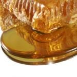 Dal miele un nuovo approccio contro l'antibiotico-resistenza