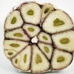 """Aglio """"germogliato"""": non buttatelo, è un potente antiossidante"""