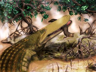 Fossile di coccodrillo. Crediti: Henry Tsai/University of Missouri