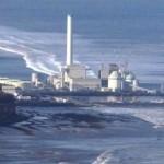 Le microalghe contro la radioattività a Fukushima