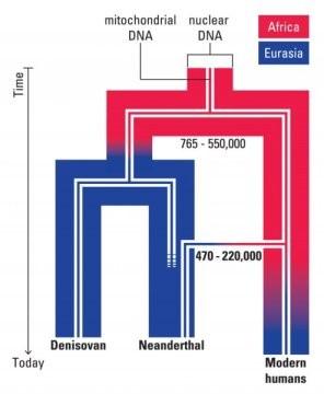 genetica-neanderthal