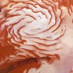 Prova di un'antica glaciazione al polo nord di Marte