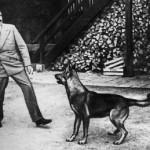 Come distorcere la storia: Federfauna dà il premio Hitler agli animalisti