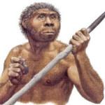 Scoperta: l'uomo discende da una sola specie di Homo erectus?