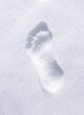 impronta-umana