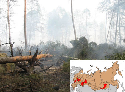 Incendi in Russia