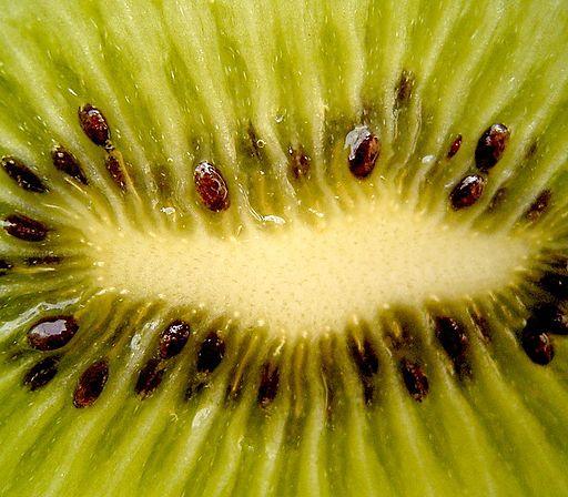 Scoperta origine della malattia del kiwi