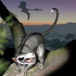 L'esplosione evolutiva dei mammiferi del Giurassico medio