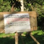 Narco-deforestazione: il narcotraffico distrugge il Corridoio Biologico Mesoamericano