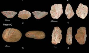 I microliti dello Sri Lanka, innovazione tecnologica di 45mila anni fa