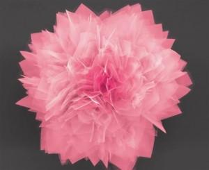 Nano-fiore in solfuro di germanio