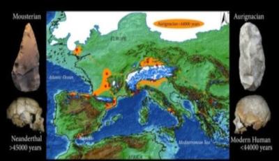 Distribuzione di siti archeologici in Europa occidentale con industrie aurignaziane vecchie più di 42mila anni, tra cui la grotta di Bajondillo. Le zone colorate in arancione indicano potenziali rotte di diffusione, favorite dal basso livello del mare. A sinistra, un cranio di Neanderthal e un attrezzo musteriano (dalla grotta di Bajondillo). A destra, un cranio umano moderno (Cro-Magnon) e un attrezzo aurignaziano, anch'esso rinvenuto nella grotta di Bajondillo. (Crediti: Università di Siviglia)