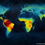Pianeta Terra: ecco dove la biodiversità è più a rischio