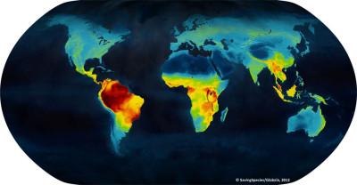 Concentrazione delle specie animali nel mondo -  SavingSpecies
