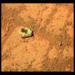 """Denuncia la Nasa: """"Su Marte c'è vita"""" e l'ha scoperta Opportunity"""