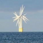 Centrali eoliche off-shore: quale disturbo per i mammiferi marini?
