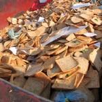 2013, anno europeo contro lo spreco alimentare: on line il questionario