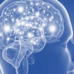 Studio italiano individua la proteina che può bloccare il Parkinson