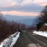 """Orso ucciso in autostrada: assessore Febbo, """"modifiche alla legge regionale"""""""