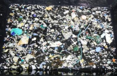 Campioni di plastica raccolti durante la Mega Expedition della fondazione The Ocean Cleanup del 2015 (foto della spedizione)