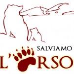 """Salviamo l'Orso sull'orso Stefano: """"pessima la gestione della comunicazione al Parco d'Abruzzo"""""""