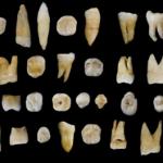 I Sapiens raggiunsero l'Asia molto prima di 50mila anni fa