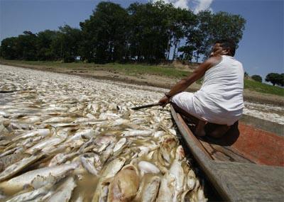 Siccità in Amazzonia nel 2009. Foto di: Bruno Kelly/A Crítica/Agência Estado