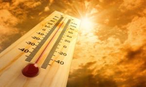 Combinazioni umidità / calore in aumento ed enormi rischi per ambiente e salute