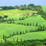 Le radici nel territorio; cosa manca anche in Toscana