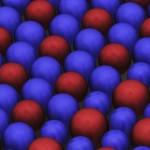 Confermata la teoria di Turing sulla morfogenesi