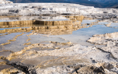 Terrazzamenti di travertino nel Mammoth Hot Springs, Parco Nazionale di Yellowstone (crediti: Ralf Broskvar)
