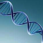 """Grande studio europeo scopre più di 80 """"errori"""" legati al cancro"""