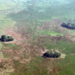 Gli insediamenti umani in Amazzonia sono più antichi di quanto si pensasse