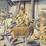 La placca dentale di agricoltori britannici del Neolitico rivela il consumo di latte